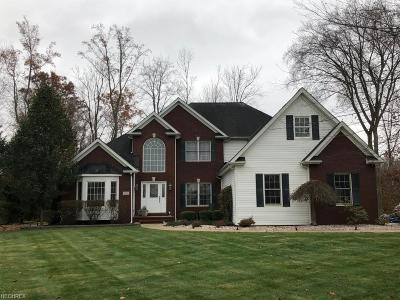 Painesville OH Single Family Home For Sale: $420,000