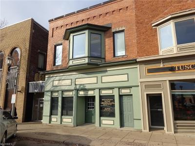 Commercial For Sale: 158 North Broadway