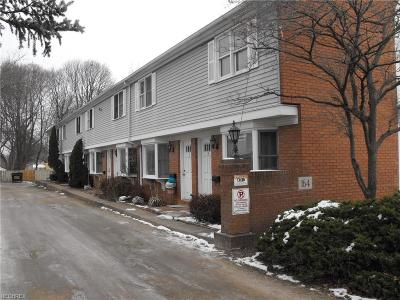 Painesville Multi Family Home For Sale: 164 Mentor Ave #1-4