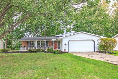Mentor Single Family Home For Sale: 6432 Curtiss Ct