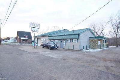 Canton Commercial For Sale: 2521 Waynesburg Drive