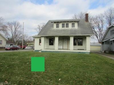 Youngstown Single Family Home For Sale: 830 Woodford Ave
