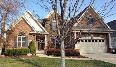 Avon Lake Single Family Home For Sale: 356 Green Jacket Ct