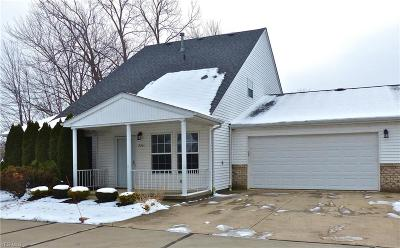 Lake County Condo/Townhouse For Sale: 770 North Creek Dr