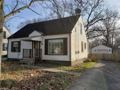 Youngstown Single Family Home For Sale: 133 Terrace Dr