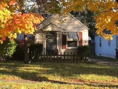 Youngstown Single Family Home For Sale: 868 Cambridge Ave