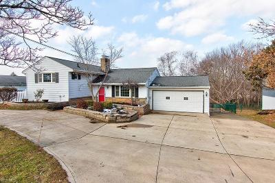 Mentor Single Family Home For Sale: 10109 Hoose Rd