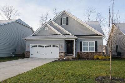 North Ridgeville Single Family Home For Sale: 5416 Trevi Ct