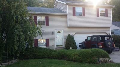 North Ridgeville OH Single Family Home For Sale: $90,000