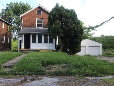 Youngstown Single Family Home For Sale: 369 Argo St