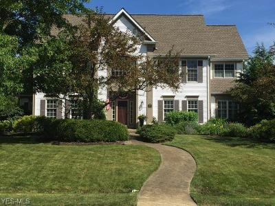 Summit County Single Family Home For Sale: 6087 Independence Dr