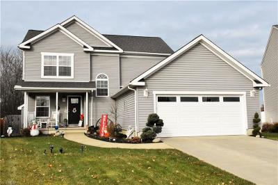 Lorain OH Single Family Home For Sale: $169,900