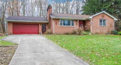 Canfield Single Family Home For Sale: 2851 Grandview Blvd