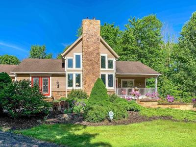 Geauga County Single Family Home For Sale: 10400 Kile Rd