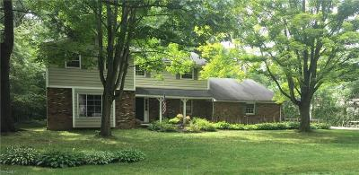 Chagrin Falls Single Family Home For Sale: 472 Greenhaven Dr