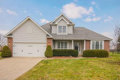 Oberlin OH Single Family Home For Sale: $249,900