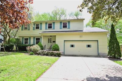 Boardman Single Family Home For Sale: 851 Ewing Rd