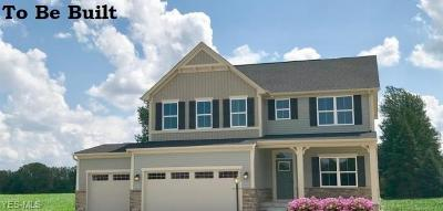 North Ridgeville OH Single Family Home For Sale: $299,990