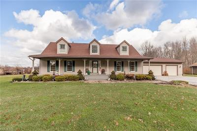 Columbia Station OH Single Family Home For Sale: $300,000