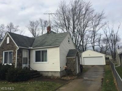 Elyria Single Family Home For Sale: 330 Bon Air Ave