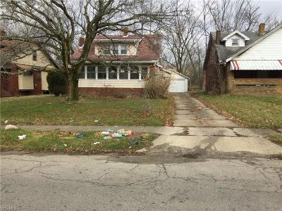 Youngstown Single Family Home For Sale: 26 Avondale Ave West