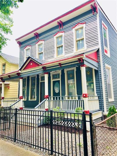 Cleveland Single Family Home For Sale: 1890 West 47th St