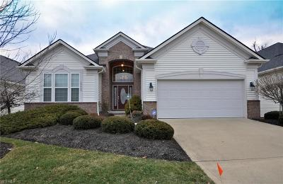 Strongsville Single Family Home For Sale: 18468 Bunker Hill Dr