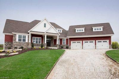 Medina Single Family Home For Sale: Tbd Chestnut Hill Dr