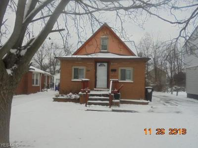 Cleveland Single Family Home For Sale: 4651 East 147th St