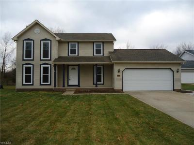 Kent Single Family Home For Sale: 930 Fieldstone Dr