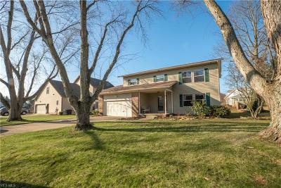 Wadsworth Single Family Home For Sale: 292 Eric Ln