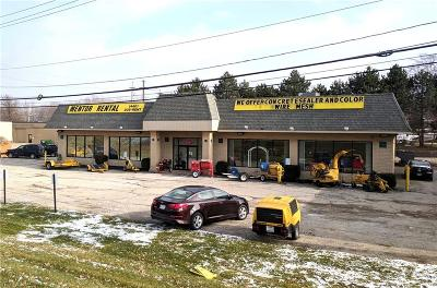 Mentor, Mentor-on-the-lake Commercial For Sale: 8425 Station Street
