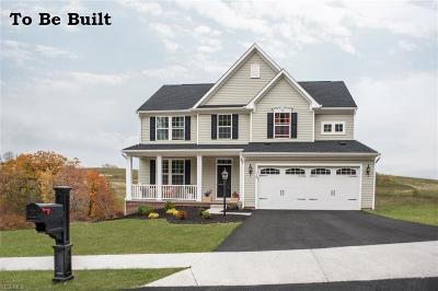 North Ridgeville Single Family Home For Sale: 36576 Rummel Mill Dr