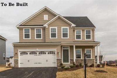 North Ridgeville Single Family Home For Sale: 36588 Rummel Mill Dr