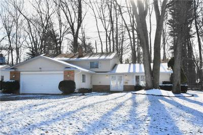 North Olmsted Single Family Home For Sale: 28011 Gardenia Dr
