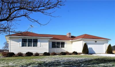 Elyria Single Family Home For Sale: 9830 Oberlin Rd