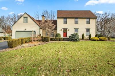 Canfield Single Family Home For Sale: 487 Greenmont Dr
