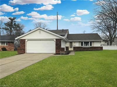 Elyria Single Family Home For Sale: 133 Northfield Dr
