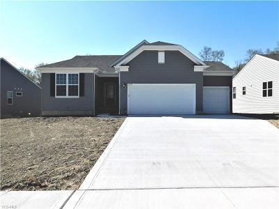 Medina Single Family Home For Sale: 5488 Arapaho Way