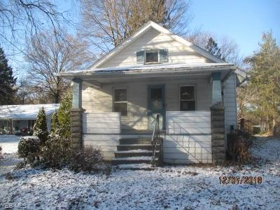 North Ridgeville Single Family Home For Sale: 7012 Root Rd