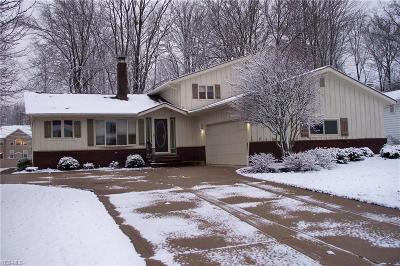 Broadview Heights Single Family Home For Sale: 8327 Glen Oak Dr