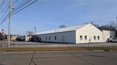 Mentor, Mentor-on-the-lake Commercial For Sale: 8820 East Avenue