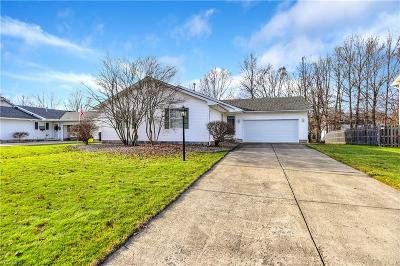 Mineral Ridge Single Family Home For Sale: 1192 Cedarwood Dr