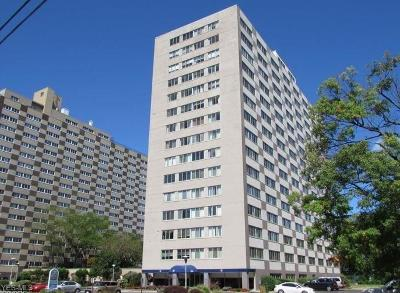 Bay Village, Cleveland, Lakewood, Rocky River, Avon Lake Condo/Townhouse For Sale: 12520 Edgewater Dr #1108