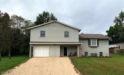 Byesville Single Family Home For Sale: 212 Greenbrier Dr