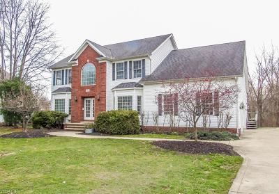 Lake County Single Family Home For Sale: 10076 Brookfield Dr