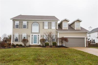 Medina Single Family Home For Sale: 211 Bridgehampton Dr