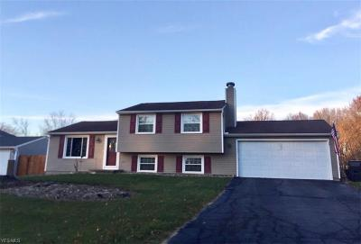 Mineral Ridge Single Family Home For Sale: 1310 Woodledge Dr