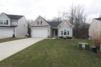 North Ridgeville Single Family Home For Sale: 8888 Fallen Timber Trl
