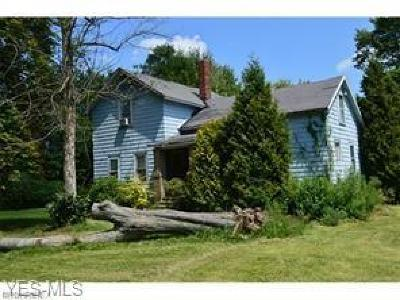 North Ridgeville Single Family Home For Sale: 9465 Island Rd